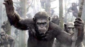 It's the 'Dawn of the Planet of the Apes' in theaters this week.